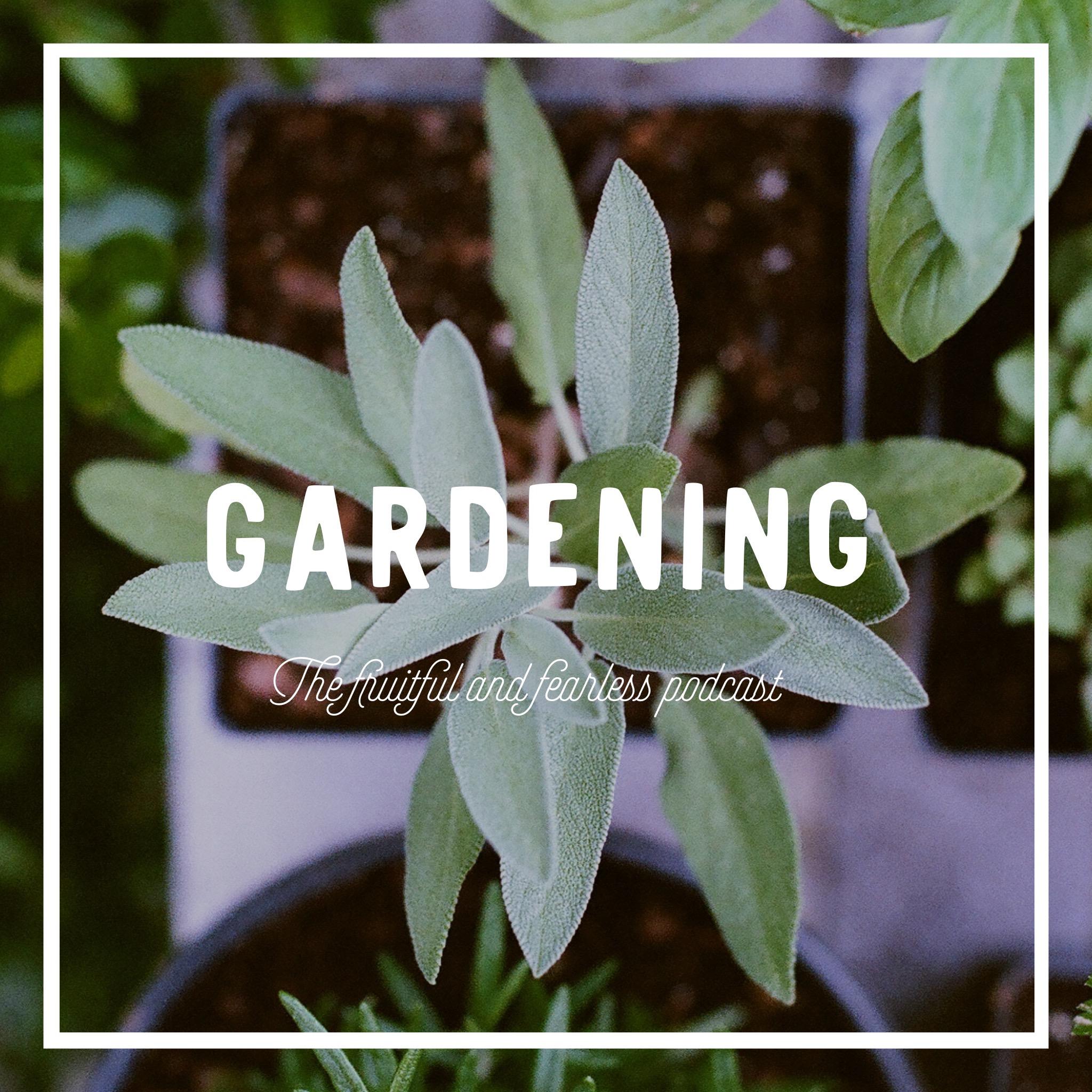 #36 Gardening
